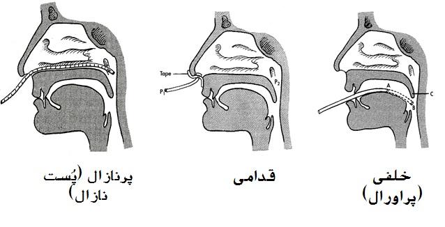 بررسی عینی کار تنفس بینی